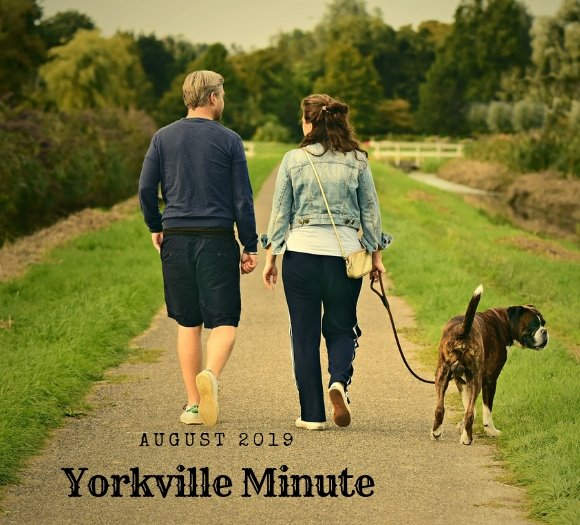 Yorkville Minute August 15, 2019 Edition