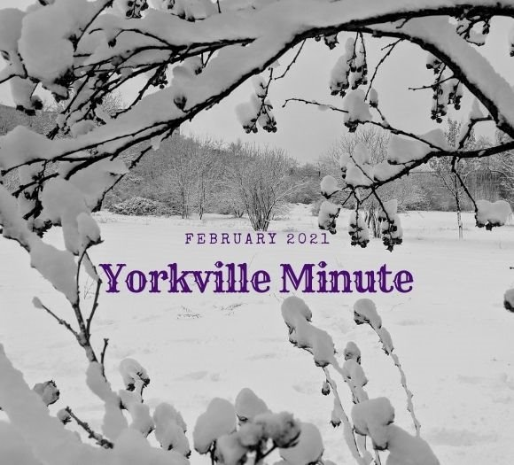 The Yorkville Minute - February 16, 2021 Edition