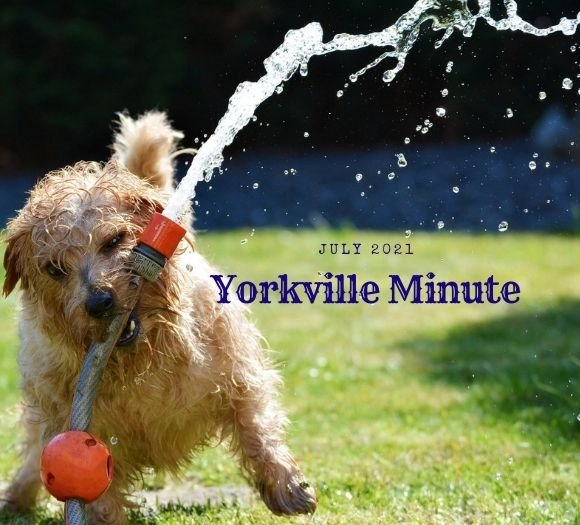 The Yorkville Minute - July 1, 2021 Edition