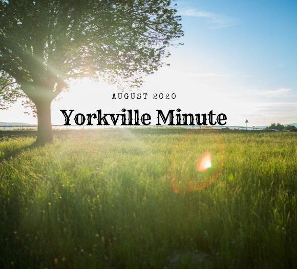 Yorkville Minute Newsletter - August 3, 2020