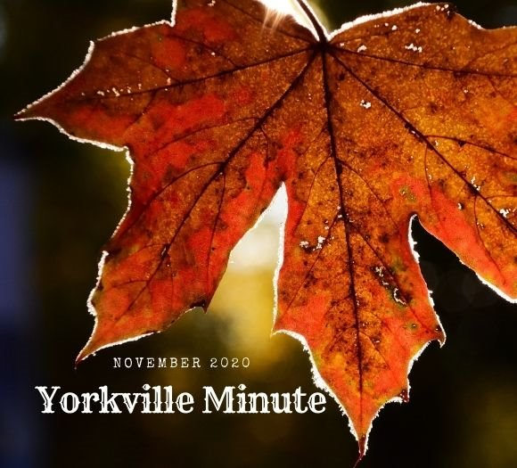 The Yorkville Minute - November 2, 2020 Edition