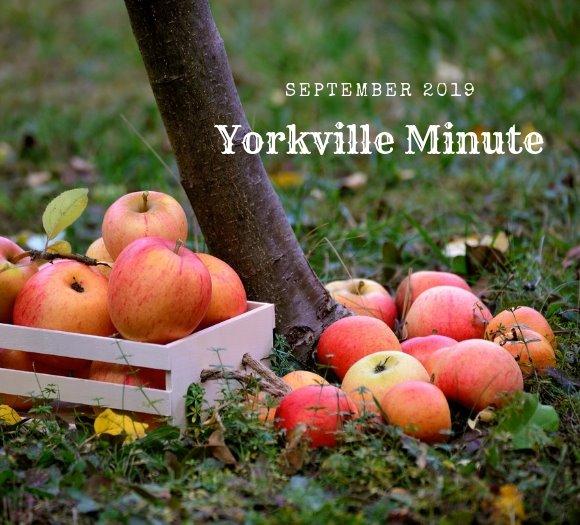 Yorkville Minute September 3, 2019