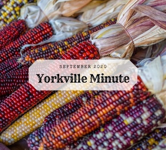 The Yorkville Minute - September 15, 2020 Edition