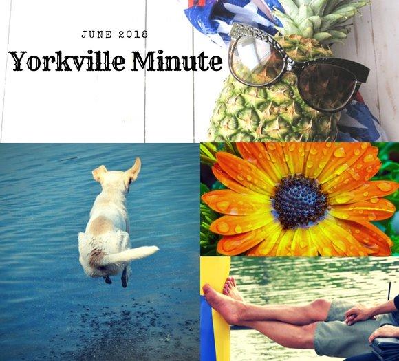 June 1, 2018 Yorkville Minute