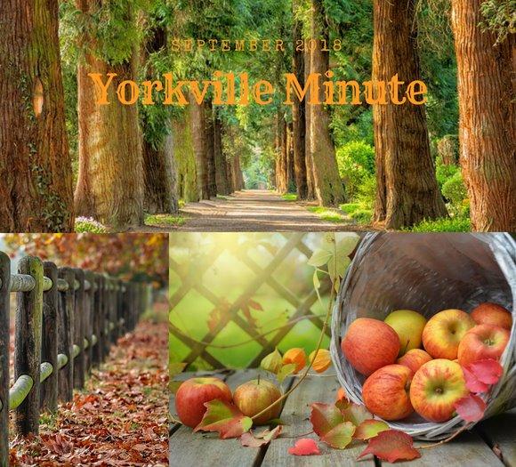 Yorkville Minute September 4, 2018 Edition