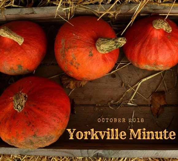 Yorkville Minute - October 1, 2018 Edition