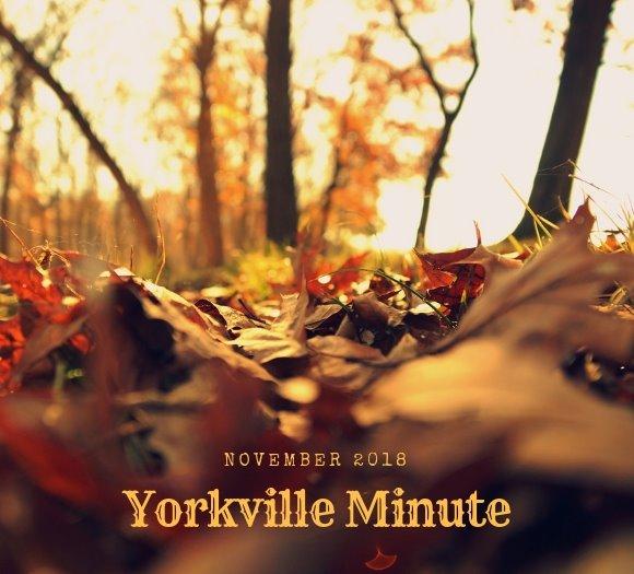 Yorkville Minute - November 1, 2018