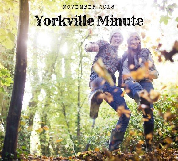 Yorkville Minute Newsletter - November 15, 2018