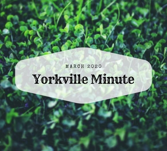 The Yorkville Minute Newsletter - March 2, 2020 Edition