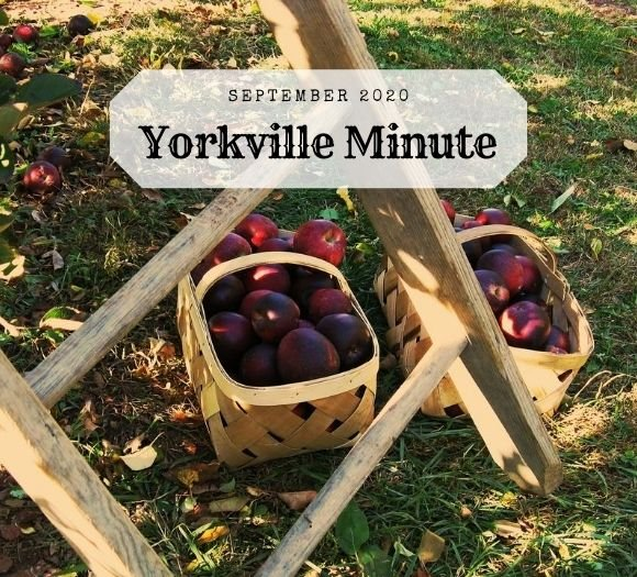 The Yorkville Minute - September 1, 2020 Edition