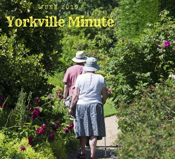 The Yorkville Minute - June 3, 2019 Edition