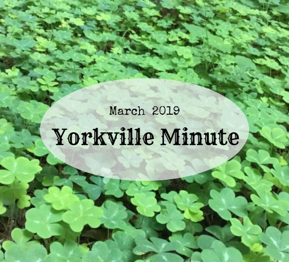 The Yorkville Minute Newsletter - March 15, 2019 Edition