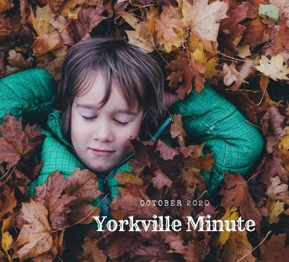 The Yorkville Minute - October 15, 2020 Edition