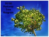 50/50 Parkway Tree Program