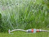 Lawn Watering Restrictions